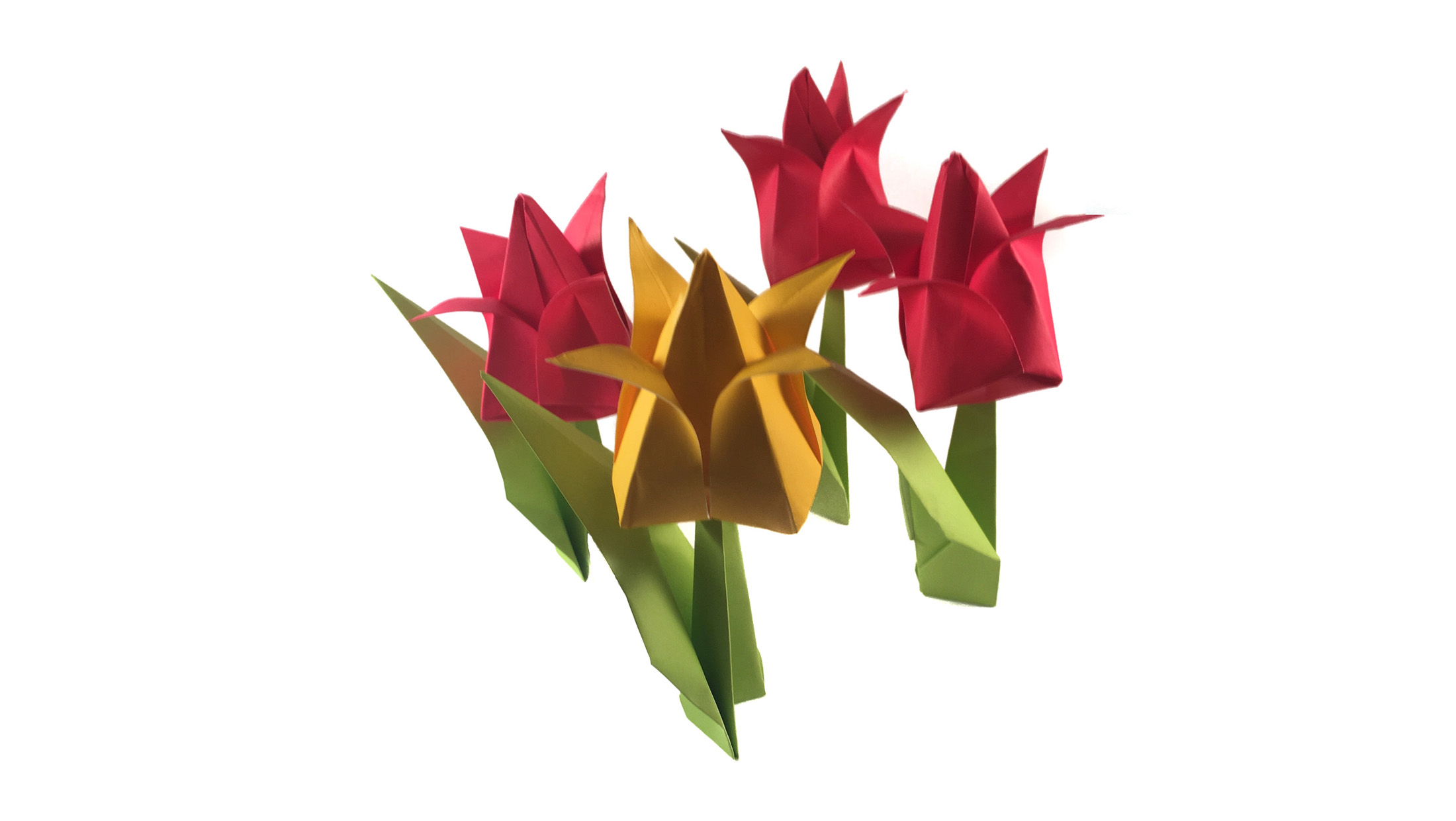 How to Make an Origami Tulip Step by Step Instructions | Free ... | 1240x2200