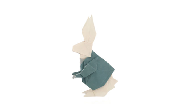 An Origami Rabbit in Wonderland