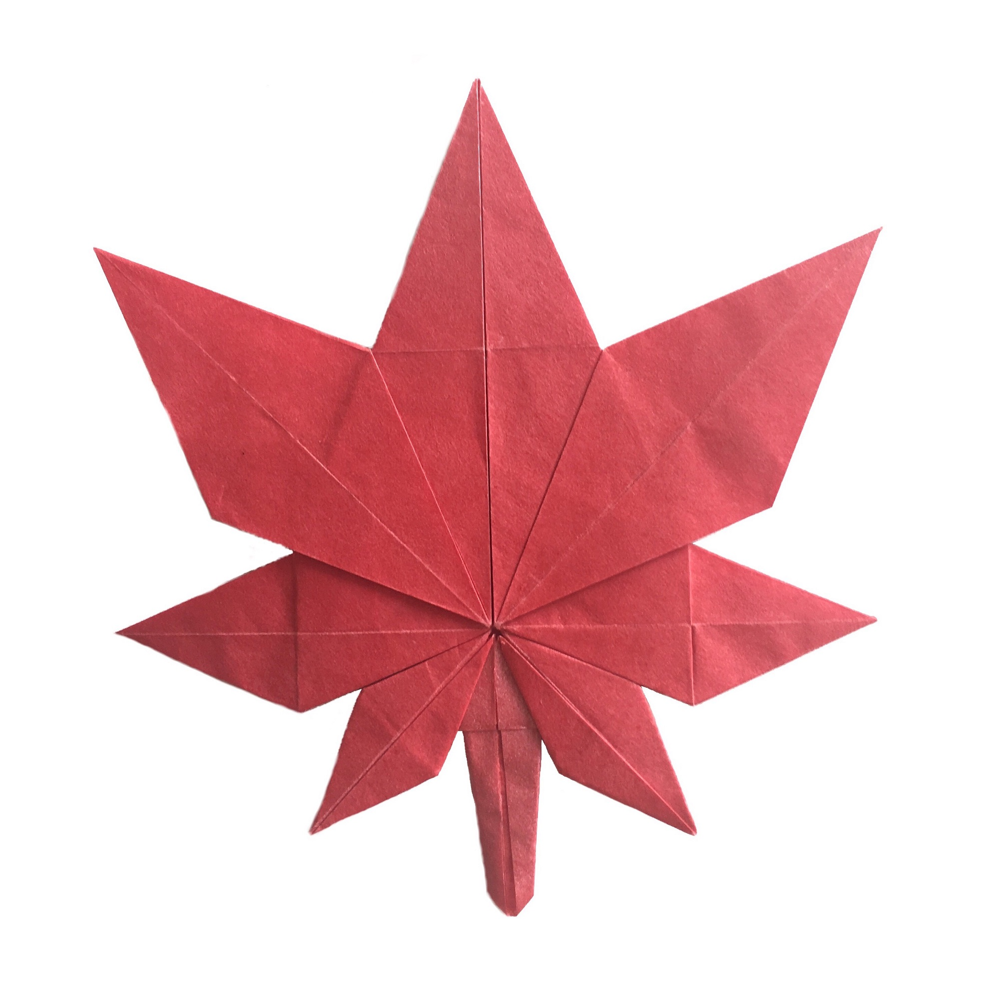 Easy Origami: Leaf | Origami guide, Origami easy, Origami leaves | 2000x2000