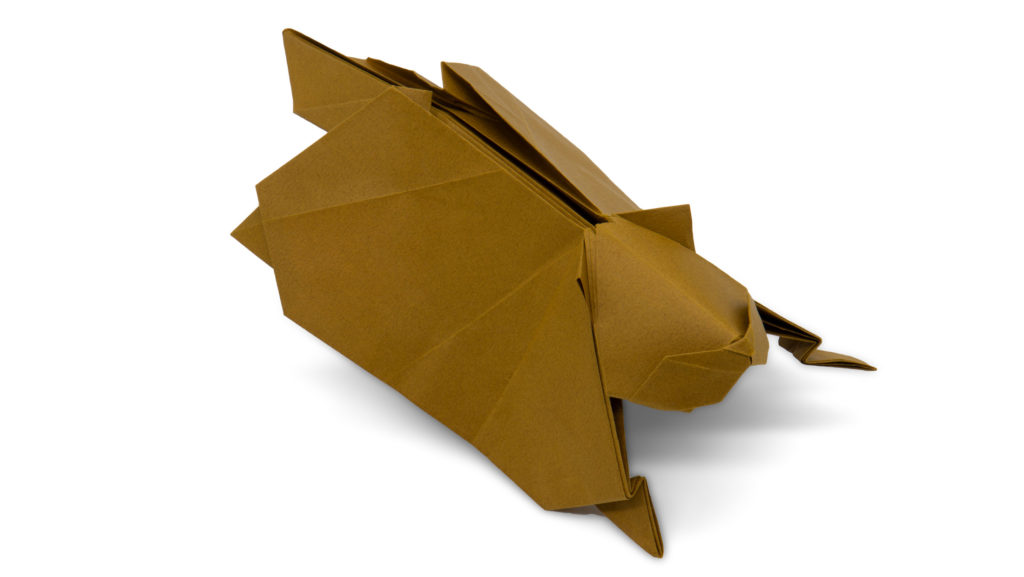 origami flying squirrel