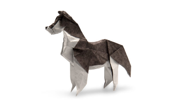 Origami Husky Models – Two Different Takes
